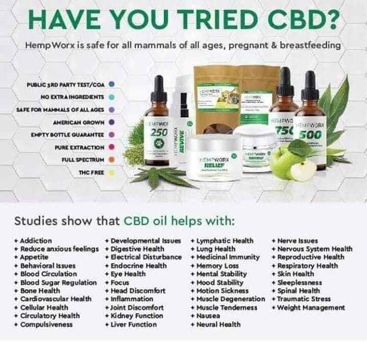 SPONSORED POST: HEALTH BENEFITS OF CBD OIL